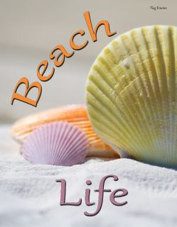 Flag Emotes - Double Sided Garden Flag - Beach Life Multi Colored Shells