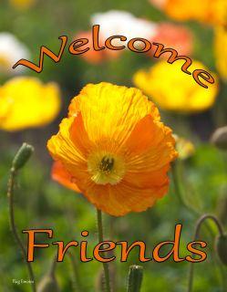 Flag Emotes - Double Sided Garden Flag - Orange Flower Welcome Friends